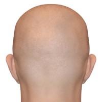 קורס הדמיית שיער