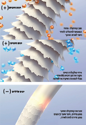 POWER CLOUD : מייבש שיער מקצועי עם וסת היונים. (+) /(-) Negative and positive ions
