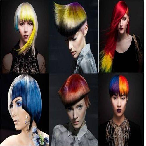 הפיינליסטים בתחום צבעי השיער בתחרות NAHA