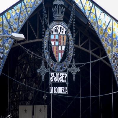 שוורצקופף פרופשיונל ברצלונה 2016