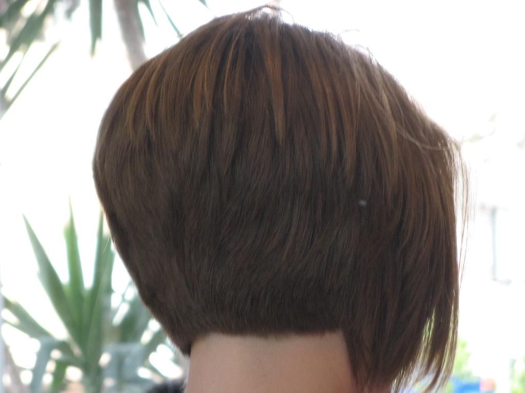 רונן פאילייב עיצוב שיער מקצועי בתל אביב