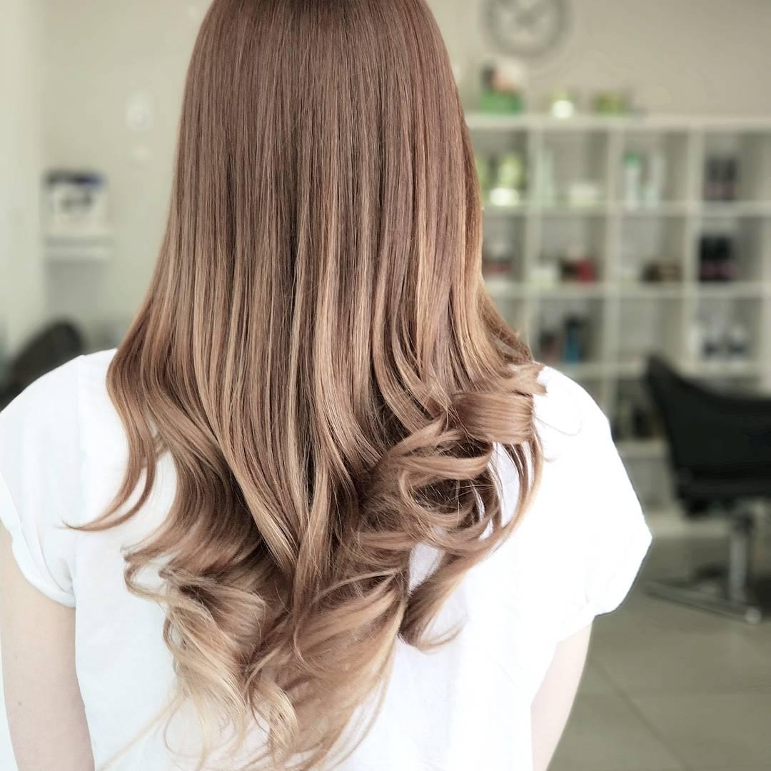 צבעי שיער ברק בשיער