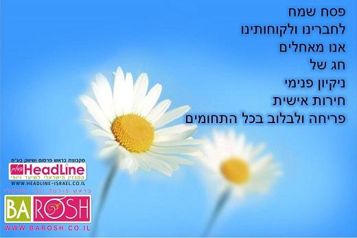 הדליין המגזין הישראלי לשיער מאחלים לכם חג שמח