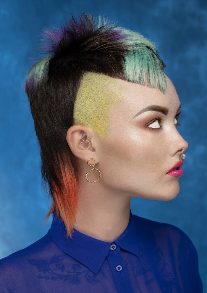 קולקציה צבעי שיער